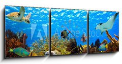 Obraz s hodinami 3D třídílný - 150 x 50 cm F_BM68530036 - underwater panorama of a tropical reef in the caribbean